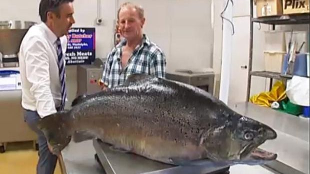 Photo of La plus grosse truite du monde, record à 93cm pour 19,1kg