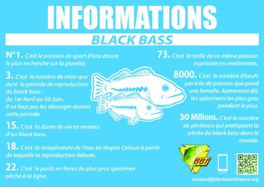 cycle-biologique-black-bass-02