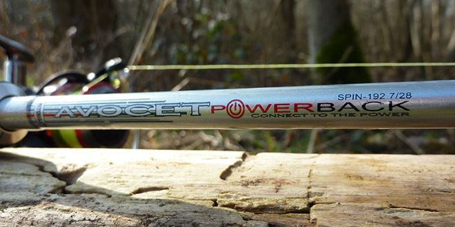 Photo de Test canne Mitchell Avocet Powerback Spin