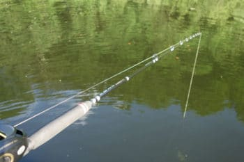 Canne casting big bait pour pêcher le brochet